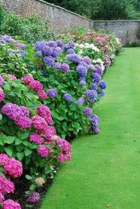 A lovely garden. I want a yard like this!