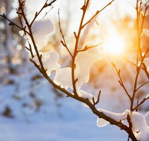 Norwegian winter landscape bathing in warm afternoon sunlight